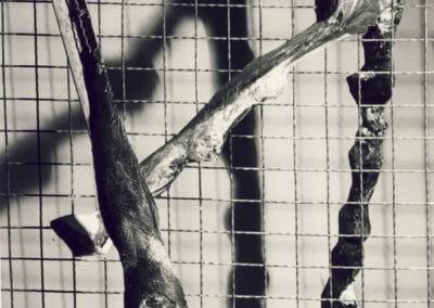 Briefe,nicht abgeschickt, gips, Draht, 1988